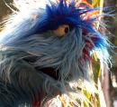 Blue furry monster